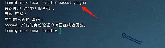 设置用户密码